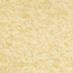 ASTROPARCHE ENVELOPES 60T (89gsm) Ancient Gold #10 COMMERCIAL FLAP