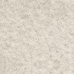 ASTROPARCHE ENVELOPES 60T (89gsm) Gray #10 COMMERCIAL FLAP