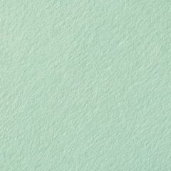 COLORPLAN FOLDER PLAIN 100C (270gsm) Park Green A-2
