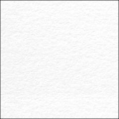 CRANE'S LETTRA 220DTC (595gsm) Fluorescent White 26 X 20 440M GS