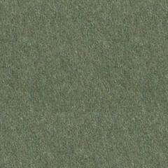 GMUND COLORS MATT 111C (300gsm) Seedling Green (16) 11 X 17