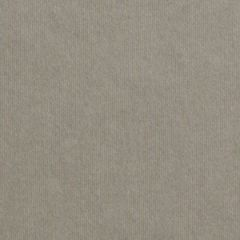 GMUND URBAN 111C (300gsm) Architect Grey 27.5 X 39.3 462M GL